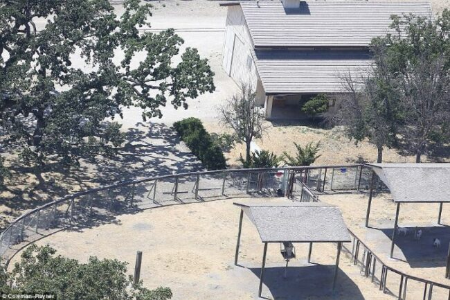 Here's abandoned Neverland ranch recent photos -6